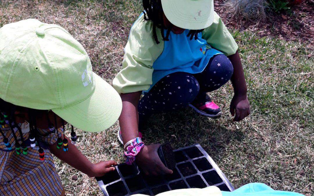Crescer a brincar – Dia Mundial da Criança no Centro Social 6 de maio